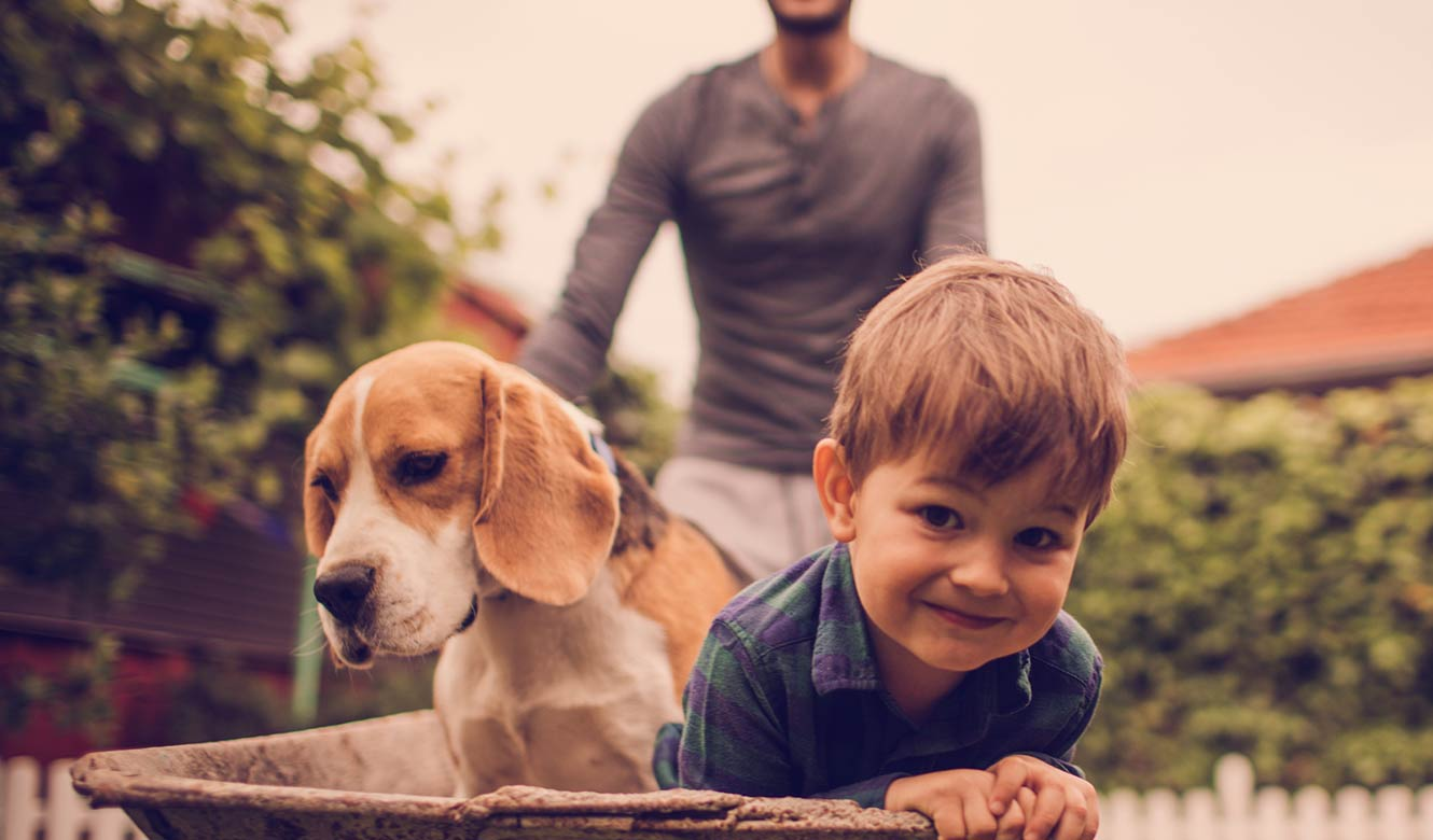 Little boy with his dad and dog.